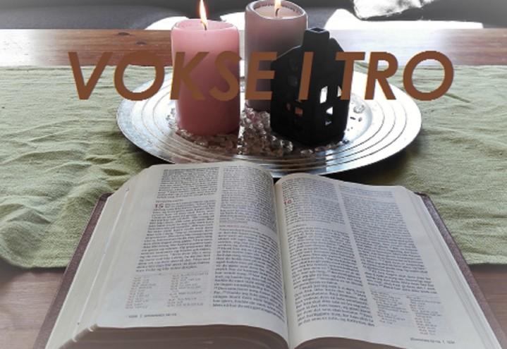 Bibel -og fellesskapsgrupper